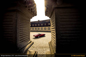 Stingrays at RokokoCastle XIII by AmericanMuscle