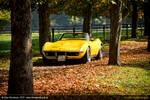 Corvette Autumn