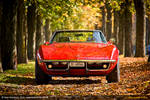 Corvette Autumn III