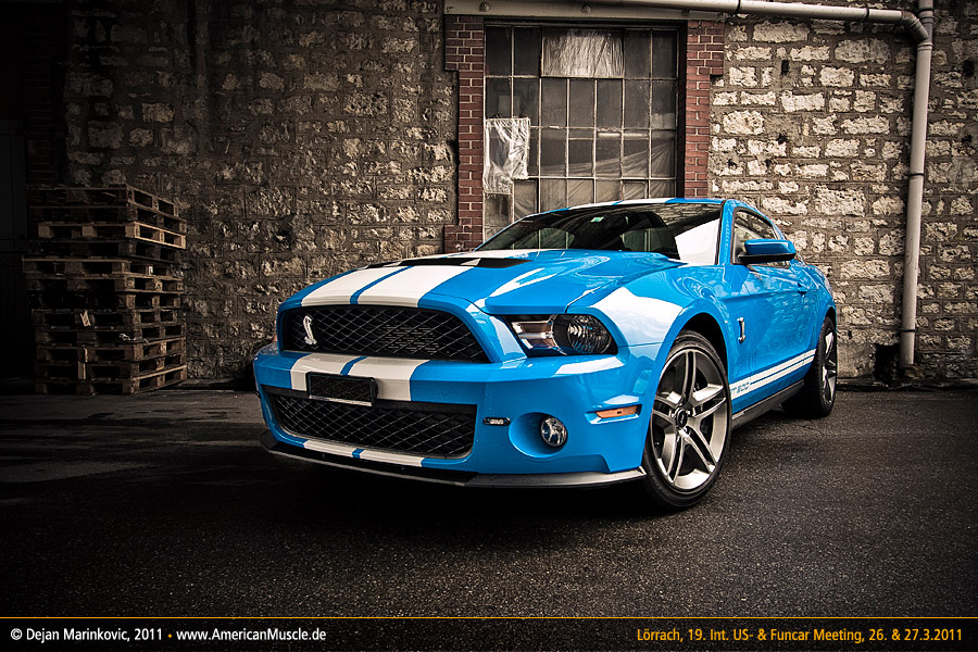 blue Shelby by AmericanMuscle