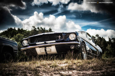 Stang by AmericanMuscle