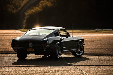 1967 Fastback by AmericanMuscle