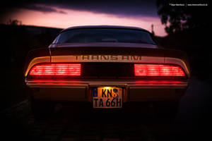 1979 Trans Am Rear by AmericanMuscle