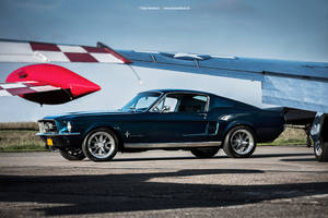 Fastback by AmericanMuscle