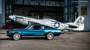 Two Mustangs by AmericanMuscle