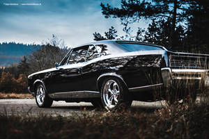 Black GTO by AmericanMuscle