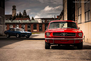 Mustang + GTO by AmericanMuscle