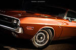 Burnt Orange Challenger
