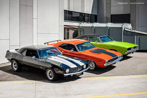 Muscle Cars by AmericanMuscle