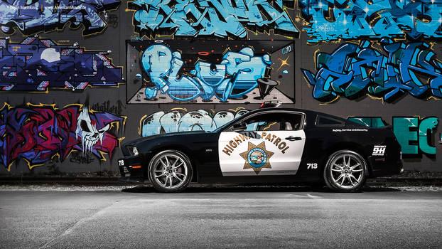 CHP Mustang VIII