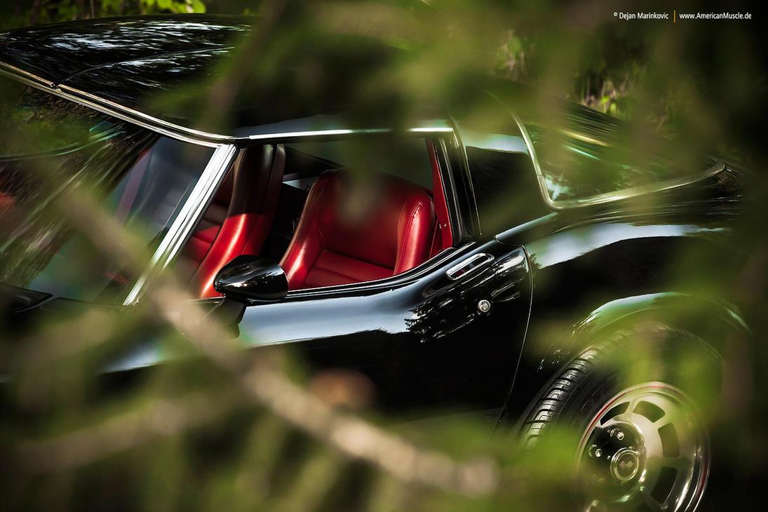 1979 Corvette C3 - Shot 5 by AmericanMuscle