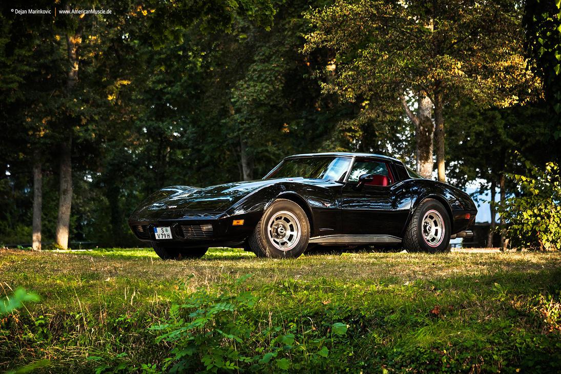 1979 Corvette C3 - Shot 6 by AmericanMuscle