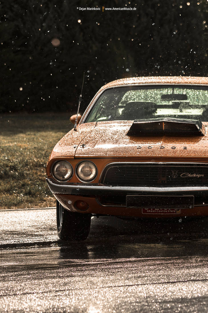 Dodge Challenger by AmericanMuscle