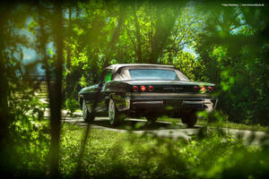 1965 Chevrolet Impala Convertible - Shot 4 by AmericanMuscle