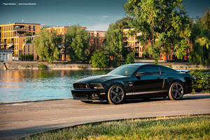 2013 Mustang GT California Special - Shot 3 by AmericanMuscle