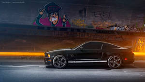 2013 Mustang GT California Special - Shot 5 by AmericanMuscle