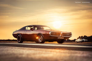 1971 Dodge Charger Super Bee by AmericanMuscle