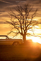 1964 Chevrolet Impala SS 409 - Shot 8 by AmericanMuscle