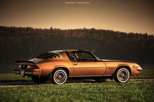 1978 Chevrolet Camaro RS - Shot 8