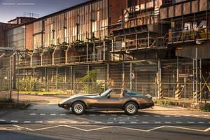 1979 Corvette C3 Survivor - Shot 3