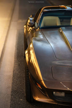 1979 Corvette C3 Survivor - Shot 4