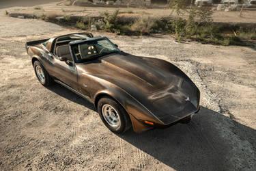 1979 Corvette C3 Survivor - Shot 6