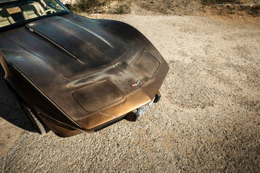 1979 Corvette C3 Survivor - Shot 8