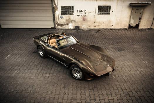 1979 Corvette C3 Survivor - Shot 10