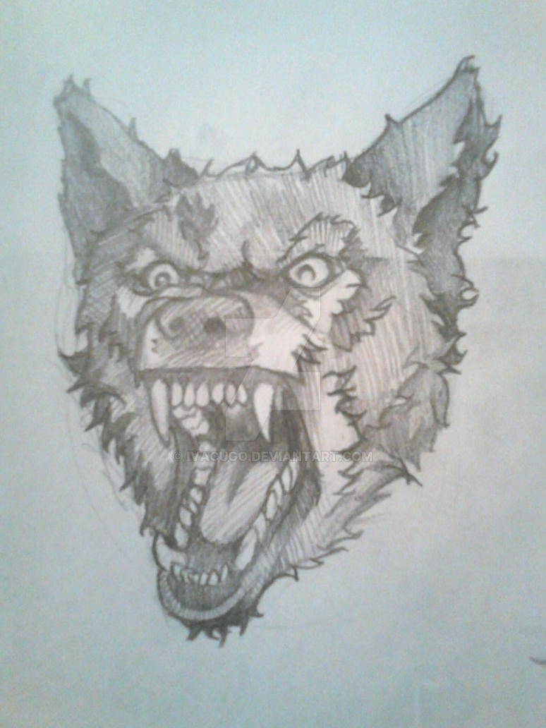 Wolf by IVACUGO