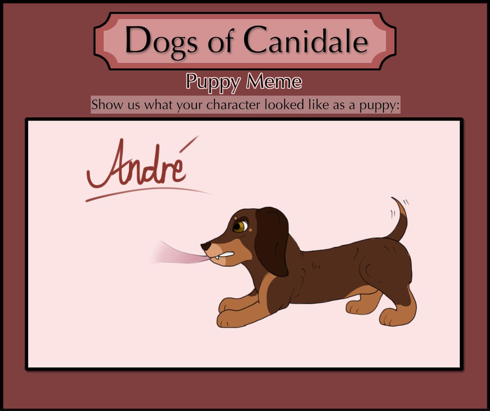 DoC | Puppy Andre by Floral-Fire