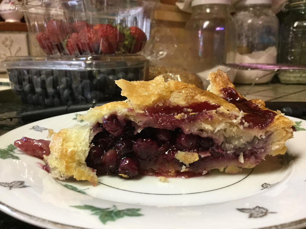 Traditional Prairie Wild Saskatoon Pie ~ by StressedLex