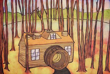 Camera dreamland by putrithewicked
