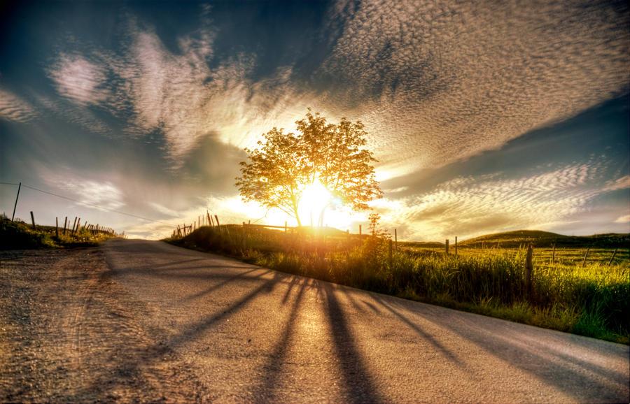 Shine for you... by JonasHodneHaugen