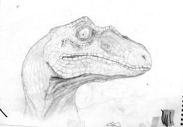 sketch velociraptor by marinpoppins