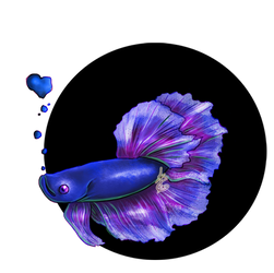 Betta Fish by AmaranthineRain