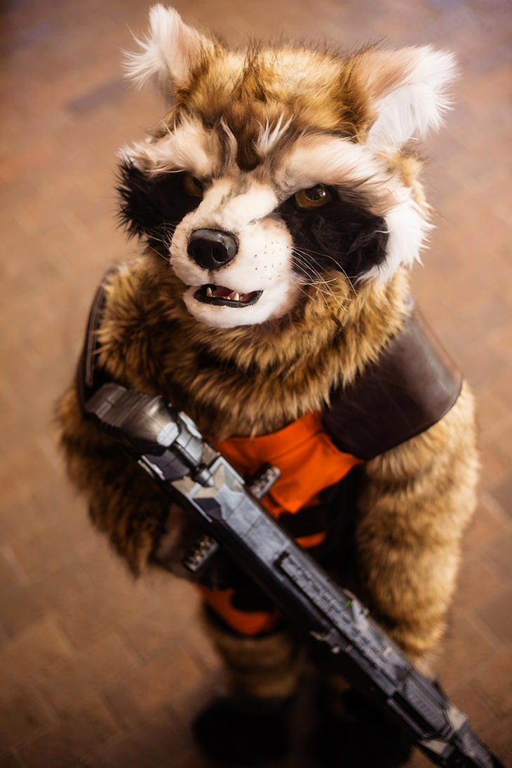Rocket Raccoon by stillreflection