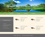Kauno tara web design