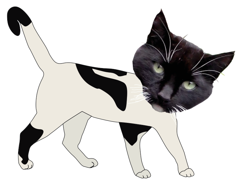 poes_by_marielledr-d68nshk.png