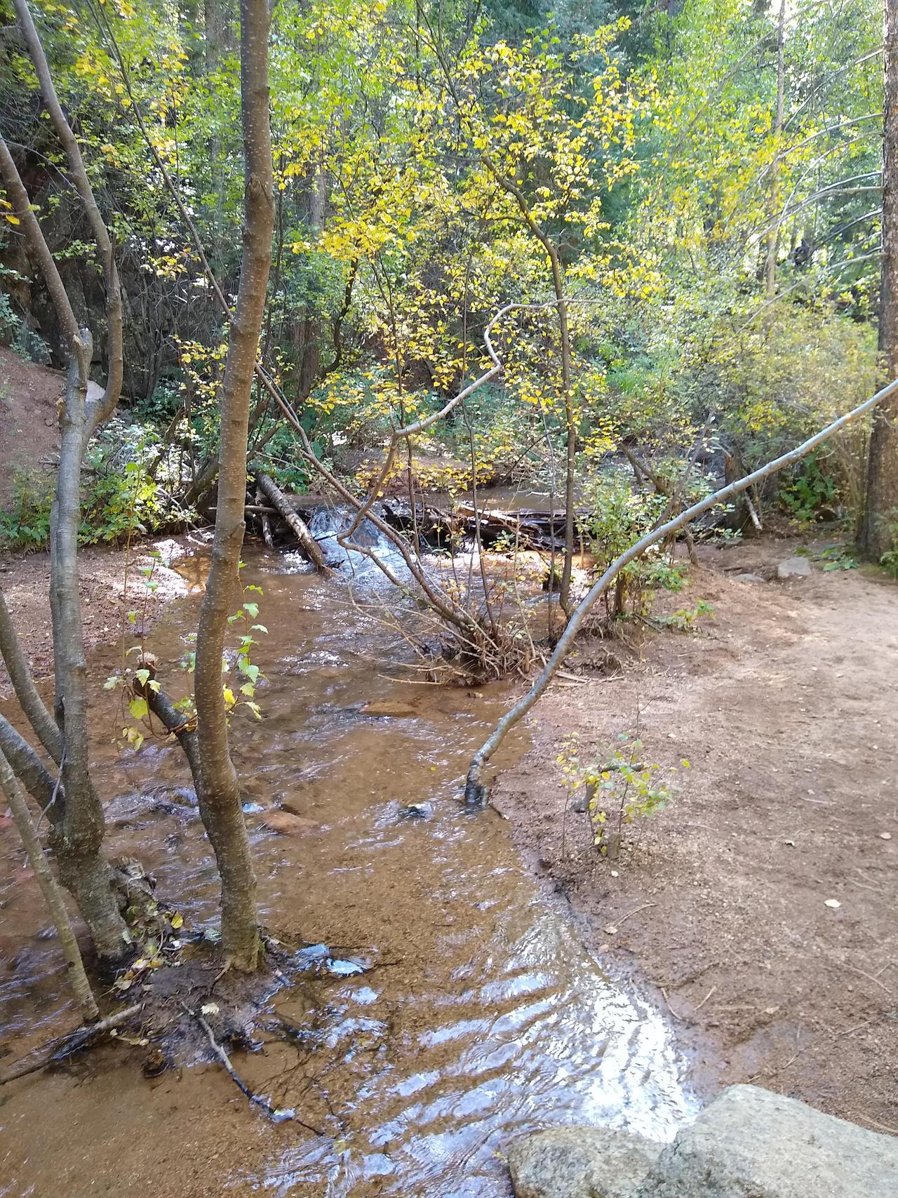 Seven Bridges Creek