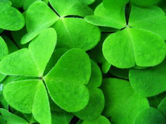 Green by Bosorka