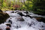 'coary' river
