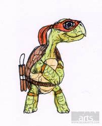 Old Ninja Turtle