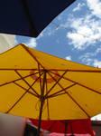 Umbrellas Under the Sun