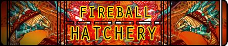 fireballhatcherylogo_by_uponnightfall-dbvp3wl.png
