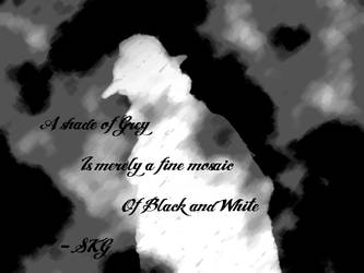 Shades of Black and White by Nemesis42888