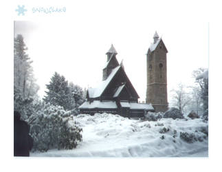SnowFlake Wang Sanctuary