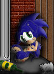 Evil Sonic: Unwanted