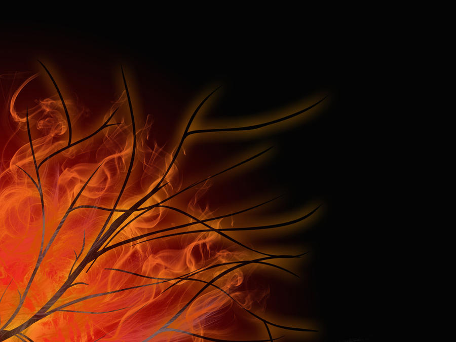 Flaming Branches by crazymonkey82394