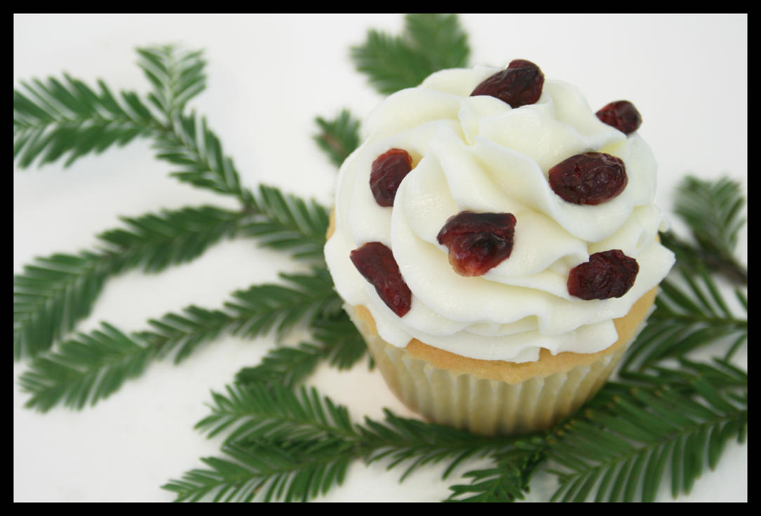 Chocolate Cranberry Cake With Bourbon Whipped Cream