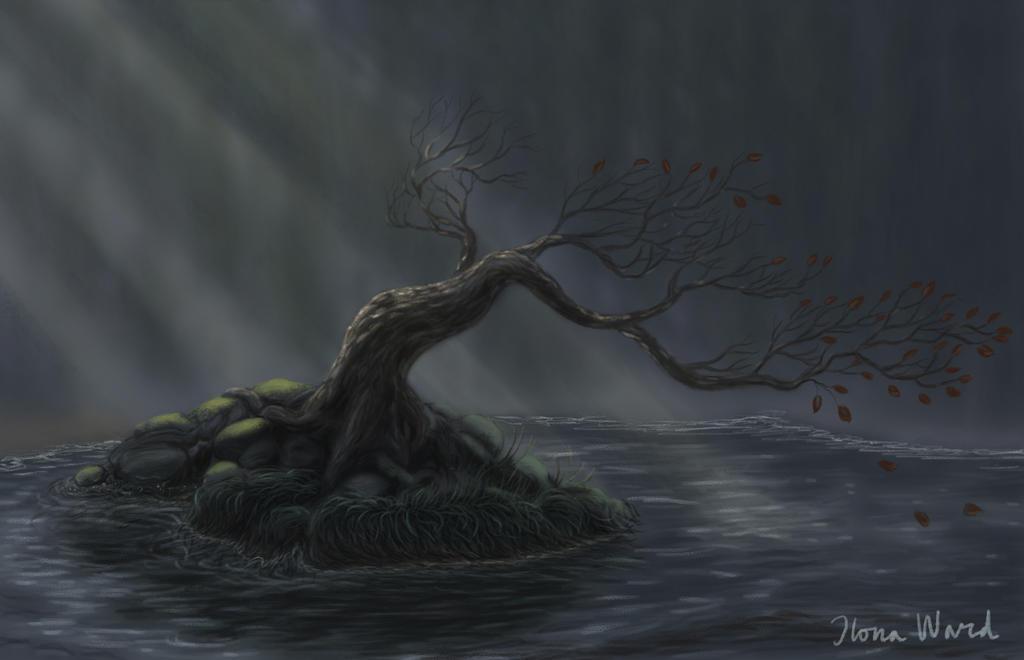 Mystery Tree by Seeeks